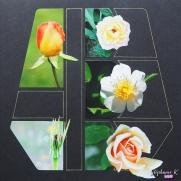 Page 30x30 Fleurs 3